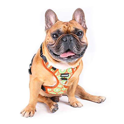 iChoue Dog Vest Harness Soft Padded No Pull Adjustable Reflective for Small Medium Dogs - Kiwi Fruit L