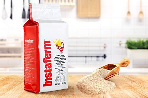 Lievito istantaneo Lallemand - 500 grammi di lievito in polvere - lievito in polvere ad uso professionale