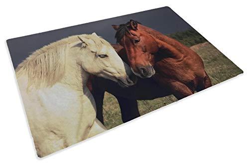 Tex Family - Alfombra felpudo digital Friends de 40 x 60 cm con caballo