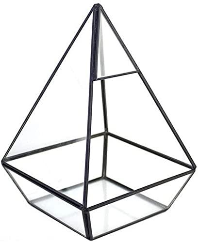 ZXYDD Jarrón geométrico de cristal transparente para flores de color negro, para...