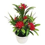 LbojailiAi Flor Artificial Flor de Loto Artificial Falsa Planta en Maceta Bonsai Wedding Party Garden Home Decor - Rojo