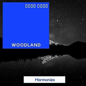 Gentle Natural Woodland Harmonies