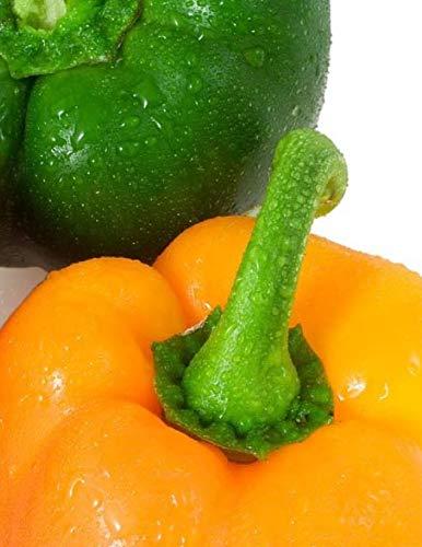 Gourmet Chilli Pepper-Orange Tigre 12 graines