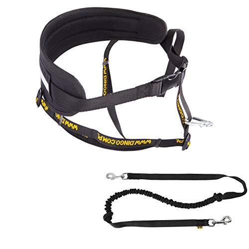 Dingo Multifunktions Lauf-Gürtel+Hundeleine mit Zwei Karabiner Leine mit Ruckdämpfer Schwarz Canicross zum Joggen mit dem Hund Dogtrekking,Skijöring Z30005