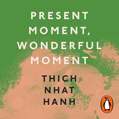 Present Moment, Wonderful Moment cover art