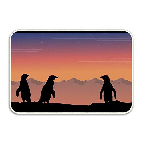 """saletopk Alfombra Exterior para Interiores de Felpudo de pingüino para Entrada, raspador de Zapatos Floormat para Puerta y Respaldo de Goma 15.7""""X 23.5"""""""
