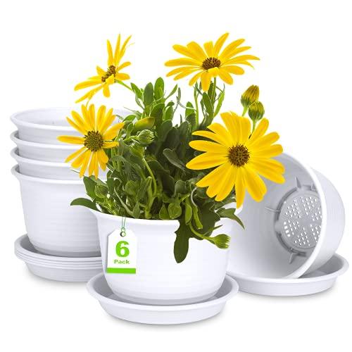 Macetero de plástico con platillo para flores y plantas, diámetro de 15 cm (6 unidades), color blanco
