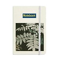 写真の葉の植物の性質 ノートブッククラシックジャーナル日記A 5