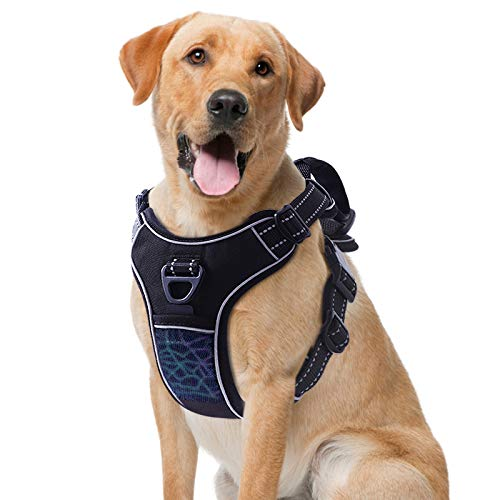 TAMOWA Dog Harness No Pull, Pet Harness with 2 Leash Clips, Adjustable Soft Padded Dog Vest and Reflective Breathable Oxford Soft Vest Easy Control Front Clip for Small Medium Large Dogs, Black, XXL