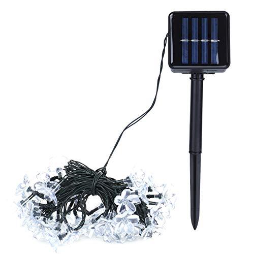 Luces solares para jardín, Luces solares con Cadena de Flores, 7.5m 50 LED Decoración para Celebraciones Festivas Interior al Aire Libre para Bodas Decoración Decoración para Fiestas