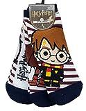 Sconosciuto Calzini da donna con licenza Harry Potter Hagrid