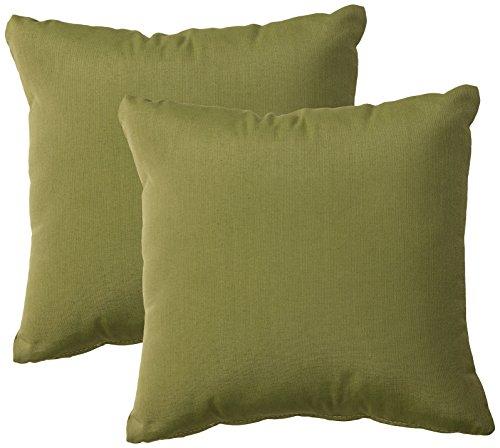 TK Classics PILLOW-CILANTRO-S-2x Throw Pillow, Cilantro