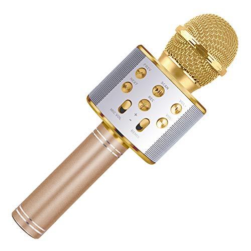 Wiwi Micrófono inalámbrico de niños Bluetooth, Regalo para niña de 4-11 años de Edad, niña niño, Caricatura, micrófono iPhone Android, Fiesta de cumpleaños Familiar, Juguete de Juguete,