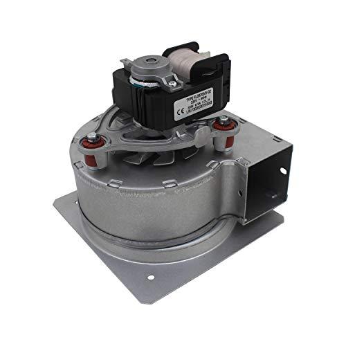 Ventilador de caldera gas 18kw extractor centrifugo industrial 220v motor estufa de pellet extractor radial humos chimenea