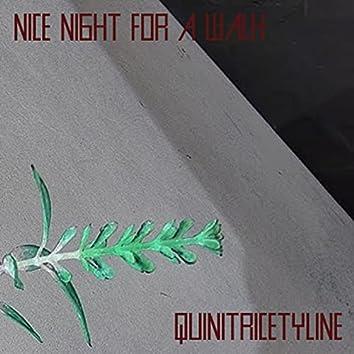 Quinitricetyline