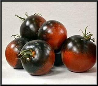 Chestnut Chocolate Tomato 9+ Seeds (Very Dark Tomatoes) zKE-755