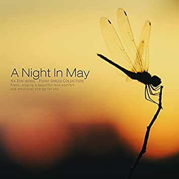 A Night In May