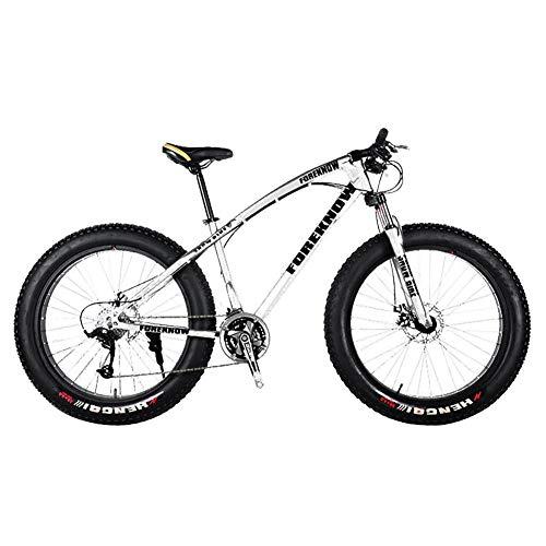 Snow Bicycles 26 pulgadas All Terrain Mountain Bike Fat Tire 27 velocidades doble freno de disco Sandy City Bike, color plateado