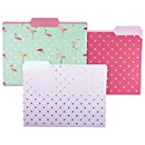 Graphique Flamingo Pink File Folder Set – File Set Includes 9 Folders and 3 Unique Flamingo and Polka Dot Designs, Embellished w/ Gold Foil on Durable Triple-Scored Coated Cardstock, 11.75' x 9.5'