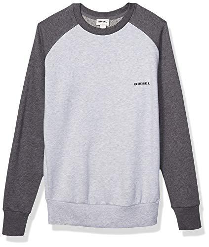 Diesel Herren Sweatshirt Casey - grau - Medium