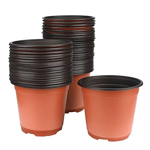 KINGLAKE 50 vasi di plastica per Piante, Fiori e per la Semina, di 15 cm di Diametro, Perfetti per Il Giardinaggio
