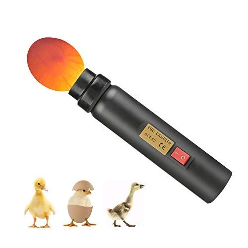 Zyyini Schierlampe, Egg Candler Incubator, LED Light Egg Tester Batterie Und USB LadegeräT High Light LED Licht Ei Tester Geeignet zum Beobachten des Eizustands (Ohne Batterie)