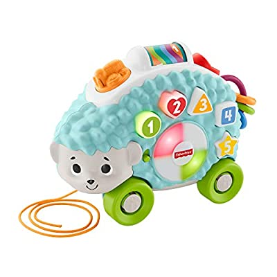 Fisher-Price GHR16 Linkimals Happy Shapes Hedgehog, Interactive Baby Toy with Lights and Sounds by Mattel