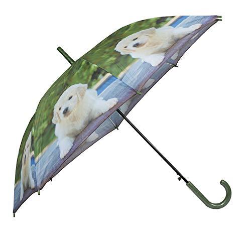 VIRSUS Ombrello da pioggia D314 con apertura automatica e con asta robusta classico di alta qualità ombrello in tessuto diverse fantasie (Verde con Cane)