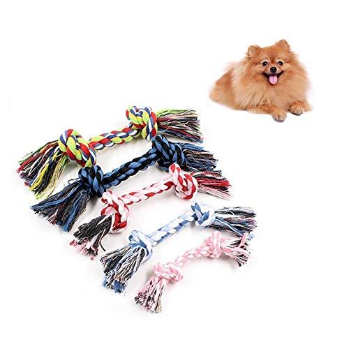 YSSWJ Ysswjzz Hundeseilspielzeug, Welpenspielzeug, 10 PCS Pet Clean Teeth Molar Doppelbaumwollseilspielzeug, for Kleine Mittelgroße Hunde-Baumwollquietsch-interaktive Spielzeuge