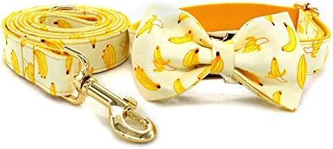 gift LUBINGT Dog Leash Free engrave wi Collar Nylon shopping ID Name