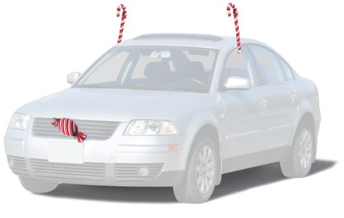 Mystic Industries Candy Cane Vehicle Costume