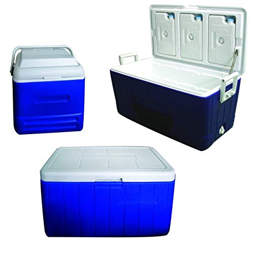 Sea Cool Kühlbox Kühltruhe tragbar ohne Strom 13 48 oder 80 Liter Angeln Angler, Bruttoinhalt:13 Liter