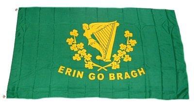 Fahne / Flagge Irland - Erin go Bragh NEU 90 x 150 cm