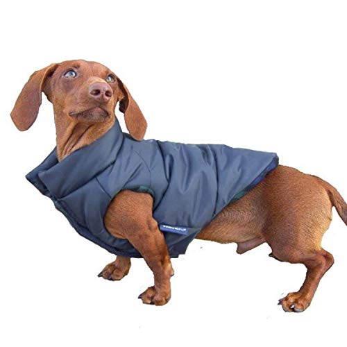 DJANGO Puffer Dog Jacket and Reversible Cold...