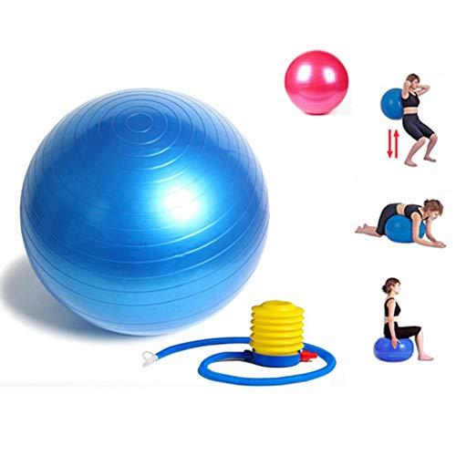 Ducomi Palla Palestra Fitness Yoga Pilates 65 cm + Pompetta - Allenamento Casa ed Equilibrio - Attrezzo Ginnastica Stretching Addominali, Gambe e Schiena - FitBall per Gravidanza e Parto