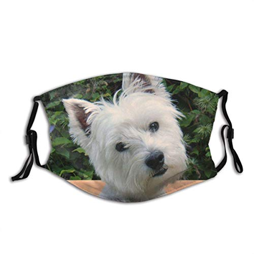 Westie Tilted 1pcs with 2 Filters Comfortable Adjustable Animal Face Cover for Adults