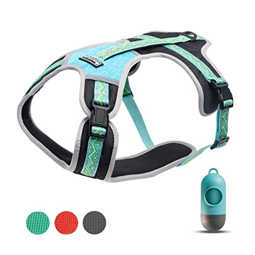 petties&sweeties Dog Harness, No-Pull Pet Vest Harness, Breathable and Adjustable Pet Halters for Medium Dogs, GreenBlue