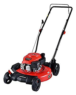 PowerSmart Lawn Mower, 21-inch & 170CC, Gas Powered Push Lawn Mower with 4-Stroke Engine, 2-in-1 Gas Mower in Color Red/Black, 5 Adjustable Heights (1.18''-3.0'' ), DB2194CR