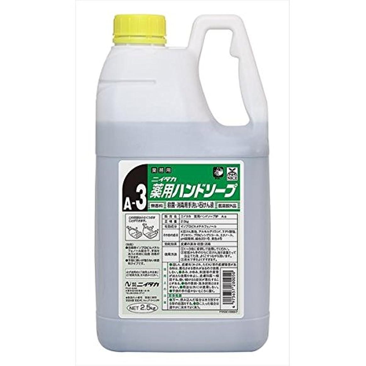 百いま形式ニイタカ:薬用ハンドソープ(A-3) 2.5kg×6 250162