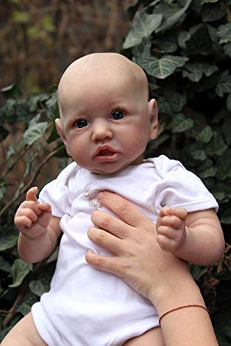 iCradle 22 Inch Reborn Baby Dolls, Realistic Newborn Baby Dolls, Lifelike Detailed Hand Painting Soft Full Body Silicone Girls Babies Doll Toy Accessories Gift for Collection & Kids Age 3+