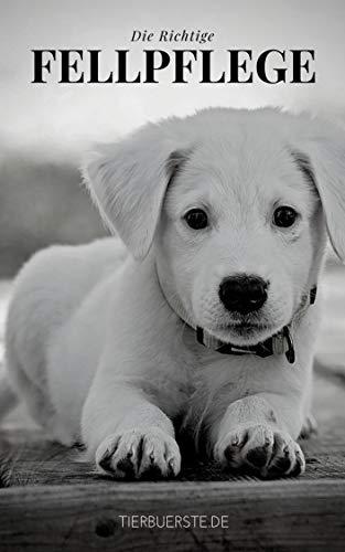 Die richtige Fellpflege für ihren Hund