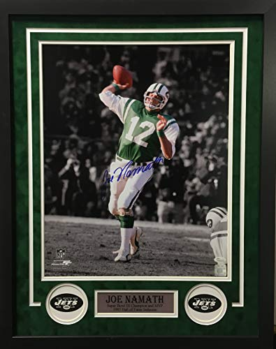 Brett Favre New York Jets NFL Framed 8x10 Photograph Team Logo Behind Passing
