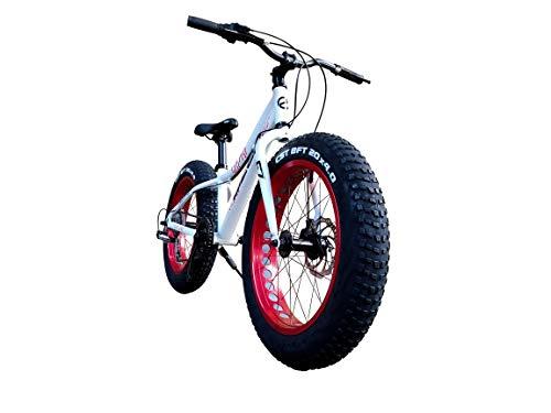 EIZER(アイゼル) ビーチクルーザー 【ファットバイク】さらに進化した! 迫力の20インチ 極太タイヤ Wディスクブレーキ&CNCディンプル加工アルミホイールに 軽量アルミフレーム とSHIMANO7速を組み合わせ走行シーンを選ばず目立つ! 比べてくだ
