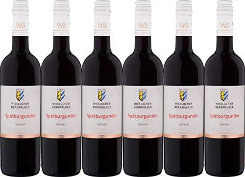 Winzer von Baden Spätburgunder Wieslocher Bergwäldle Kabinett 2018 Trocken (6 x 0.75 l)