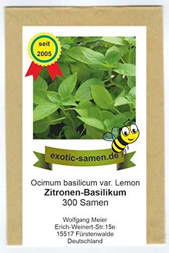 Ocimum basilicum lemon - Zitronen-Basilikum - 300 Samen