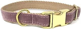 Best mauve dog collar Reviews