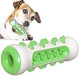 AFFINEST Kauspielzeug für Hunde Hundezahnbürste Kauen Hundespielzeug Backenzahn Interakt Welpen Zahnbürste ungiftiger Gummi-Beißschutz langlebige Zahnreinigung Grün