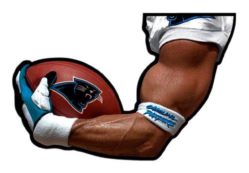 NFL Carolina Panthers Arm Magnet