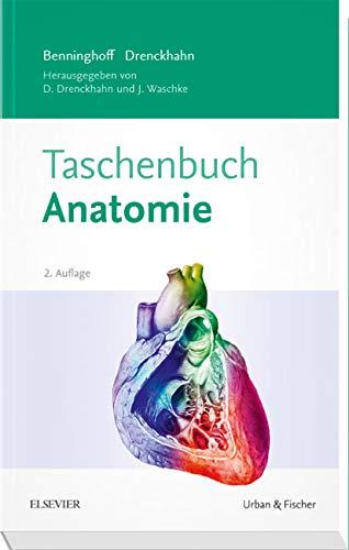 Benninghoff Taschenbuch Anatomie