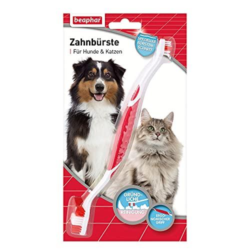 Zahnbürste für Hunde und Katzen   Hunde- & Katzen-Zahnpflege   Hundezahnbürste für gepflegte Zähne   Ergonomischer Griff   1 Stück